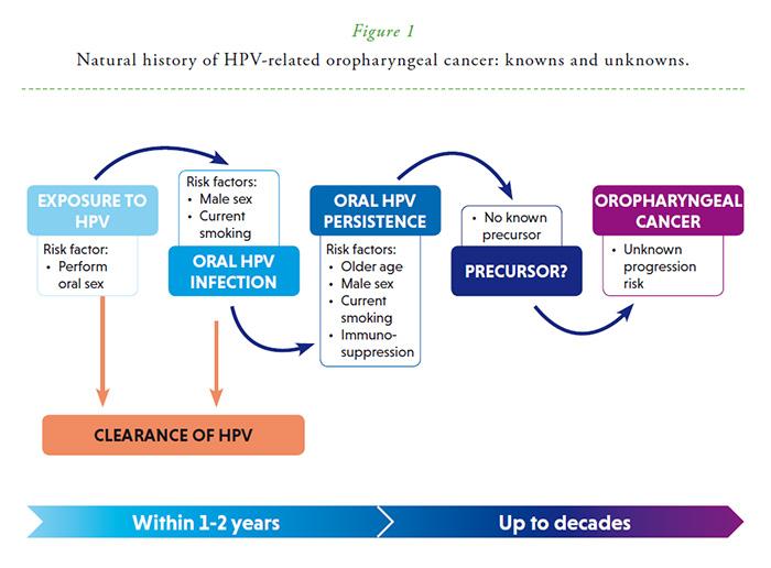hpv cancer rare